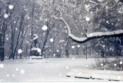 nevicata_54_1653