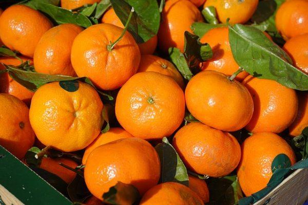 La matematica nei mandarini